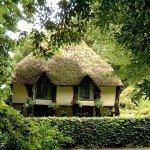 Деревенька Кокингтон (Англия)