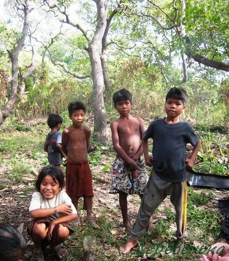 Дети на острове Бусуанга