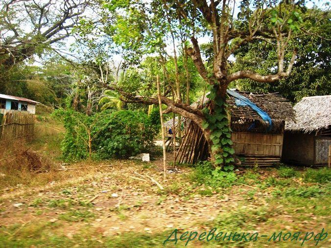 дома аборигенов