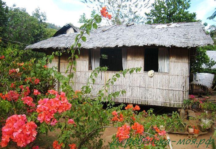 деревенский дом на филиппинах